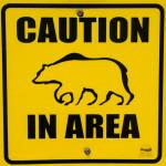Caution Bear in Area (Schild)