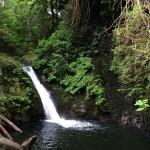 Wasserfall im Goldstream Provincial Park